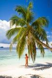 Mujer hermosa joven debajo de la palmera, vacaciones tropicales Imágenes de archivo libres de regalías