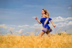 Mujer hermosa joven en campo de trigo fotografía de archivo libre de regalías
