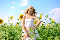 Mujer hermosa joven en campo en verano Imágenes de archivo libres de regalías