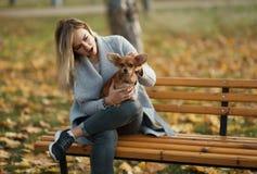 Mujer hermosa joven en el parque con su perro de pelo largo divertido de la chihuahua Fondo del otoño Foto de archivo libre de regalías