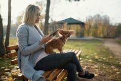 Mujer hermosa joven en el parque con su perro de pelo largo divertido de la chihuahua Fondo del otoño Fotografía de archivo libre de regalías