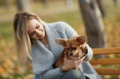 Mujer hermosa joven en el parque con su perro de pelo largo divertido de la chihuahua Fondo del otoño Fotografía de archivo