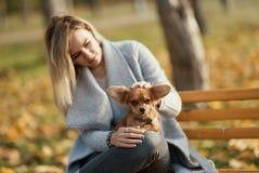 Mujer hermosa joven en el parque con su perro de pelo largo divertido de la chihuahua Fondo del otoño Fotos de archivo libres de regalías