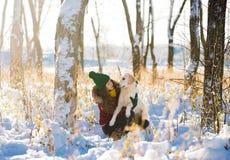 Mujer hermosa joven que abraza el perro del golden retriever en bosque del invierno Foto de archivo