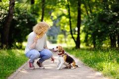 Mujer hermosa joven que juega con el perro del beagle imagen de archivo