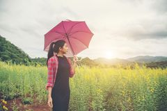 Mujer hermosa joven que sostiene el paraguas rojo en campo de flor amarillo Fotos de archivo libres de regalías