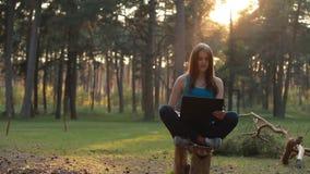 Mujer hermosa joven que usa el ordenador portátil en naturaleza metrajes