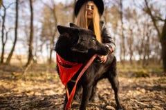 Mujer hermosa que frota ligeramente su perro al aire libre Muchacha bonita que juega y que se divierte con su animal doméstico po fotografía de archivo libre de regalías