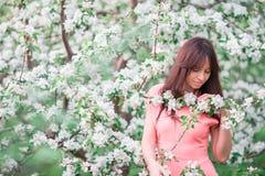Mujer hermosa que goza del olor en jardín de la cereza de la primavera fotografía de archivo libre de regalías