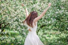 Mujer hermosa que goza del olor en jardín de la cereza de la primavera foto de archivo