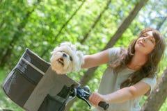 Mujer hermosa que monta una bici con su perro Imagen de archivo libre de regalías