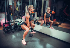 Mujer hermosa que resuelve con pesas de gimnasia Imagen de archivo