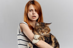 Mujer hermosa que sostiene un gato imagen de archivo