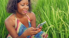 Mujer hermosa y feliz joven que usa establecimiento de una red del teléfono móvil y aire libre alegre sonriente en el campo tropi almacen de metraje de vídeo