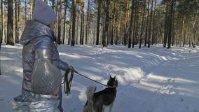 Mujer hermosa y pequeño niño que caminan en bosque del invierno con del perro fornido Madre joven feliz con la hija en almacen de video