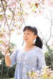 Mujer japonesa con la flor de cerezo Imagen de archivo