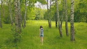 Mujer joven atractiva de la opinión del abejón que camina en el bosque Sígame en bosque metrajes