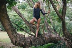 Mujer joven atractiva en el bikini que presenta en tronco de árbol tropical en bosque Fotografía de archivo
