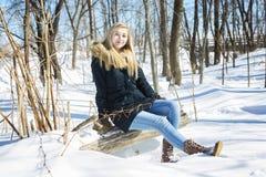 Mujer joven atractiva en el invierno al aire libre Imagen de archivo
