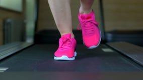 Mujer joven caucásica atractiva atlética que hace ejercicio cardiio en gimnasio Muchacha de la aptitud, sportwoman en el funciona metrajes
