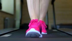 Mujer joven caucásica atractiva atlética que hace ejercicio cardiio en gimnasio Muchacha de la aptitud, sportwoman en el funciona almacen de video