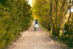 Mujer joven con el bebé en un cochecito que camina a través del callejón del árbol fotografía de archivo