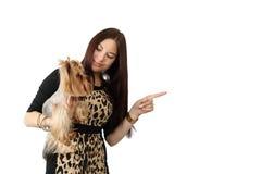 Mujer joven con el pequeño perro Fotos de archivo