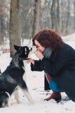 Mujer joven con el perro fornido en el parque del invierno Fotos de archivo libres de regalías