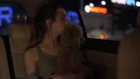 Mujer joven con su perro que viaja en un taxi almacen de metraje de vídeo