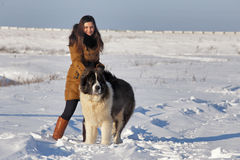 Mujer joven con un perro grande Día de invierno soleado Fotografía de archivo