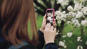 Mujer joven con un teléfono en un jardín floreciente de la primavera Visión posterior almacen de metraje de vídeo