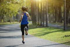 Mujer joven de la aptitud que corre en el parque tropical Imágenes de archivo libres de regalías