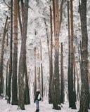 mujer joven del viajero en bosque del invierno Imagen de archivo libre de regalías