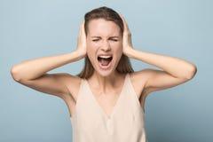 Mujer joven emocional hacer poder de la demostraci?n del gesto del ganador foto de archivo libre de regalías