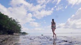 Mujer joven en bikini que camina en la arena mojada en la playa del mar en el cielo una opinión de palmera Muchacha hermosa en tr almacen de video