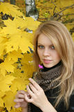 Mujer joven en bosque del otoño Imagenes de archivo