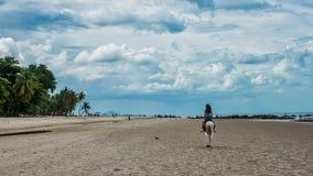 Mujer joven en caballo de montar a caballo de la playa fotografía de archivo libre de regalías