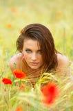 Mujer joven en campo de trigo Fotos de archivo libres de regalías