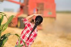 Mujer joven en campo de trigo durante cosecha Foto de archivo libre de regalías