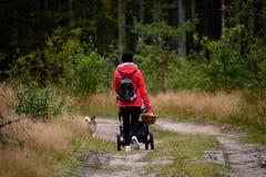 mujer joven en chaqueta roja que disfruta de la naturaleza en el bosque Letonia Fotos de archivo