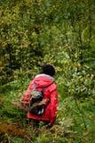 mujer joven en chaqueta roja que disfruta de la naturaleza en el bosque Letonia Imágenes de archivo libres de regalías
