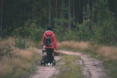 mujer joven en chaqueta roja que disfruta de la naturaleza en el bosque Letonia - VI Foto de archivo libre de regalías
