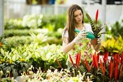 Mujer joven en jardín de flores Imagen de archivo