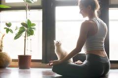 Mujer joven en la media actitud de Lotus en casa, gato cerca Imagen de archivo libre de regalías