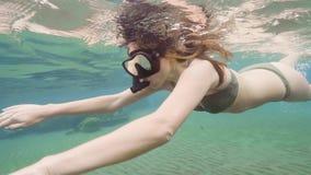 Mujer joven en la natación del traje de baño subacuática en máscara y tubo que bucean Arrecife de coral que bucea y de observació metrajes