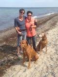 Mujer joven en la playa con los perros Imagenes de archivo