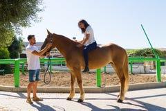 Mujer joven en un caballo marrón sin la silla de montar Fotografía de archivo libre de regalías