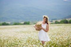 Mujer joven en un campo de margaritas florecientes foto de archivo libre de regalías