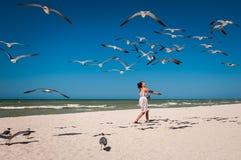 Gaviotas de alimentación de la mujer en una playa Fotografía de archivo libre de regalías