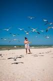 Una mujer que toma el pelo una multitud de gaviotas en una playa Foto de archivo libre de regalías
